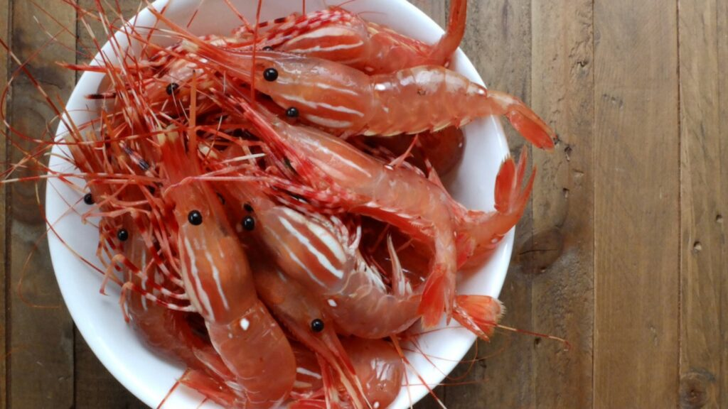 Spot prawns from our very own Lulu King